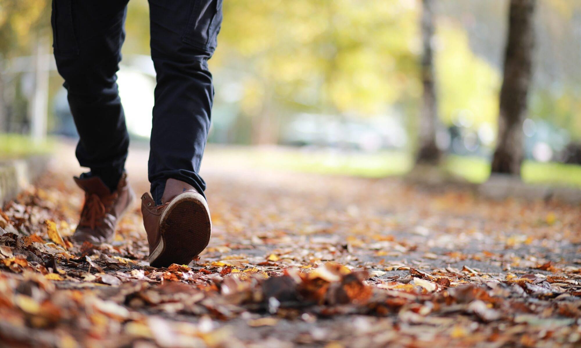 Walking through the autumn leaves